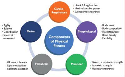 Prevención y tratamiento del riesgo cardiovascular